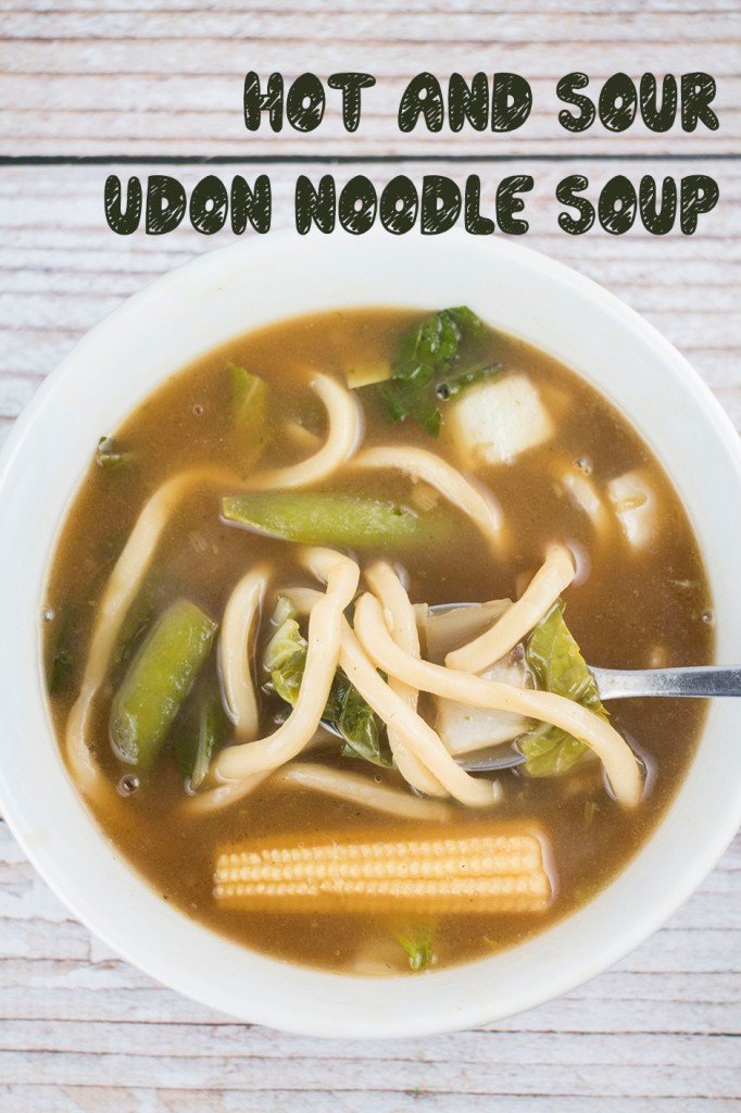 Hot and Sour Udon Chinese Noodle Soup | Brooklyn Farm Girl